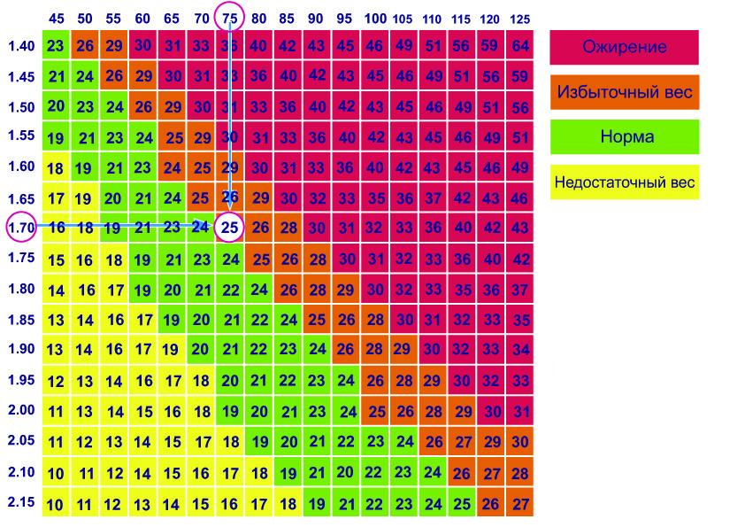 Идеальные модельные параметры веб камеры логитеч все модели